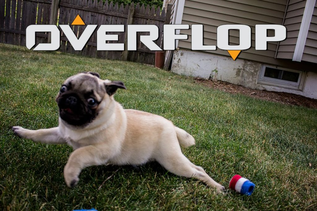 Overflop: Session 4: The freshest and dankest of floppers